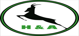 Jobs and Careers at H And A, Egypt | ArabJobs.com