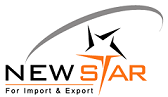 Jobs and Careers at New Star, Egypt | ArabJobs.com