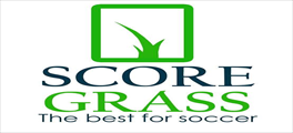 Jobs and Careers at Score Grass, Egypt | ArabJobs.com